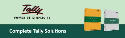 Professional Tally Service Provider in Dubai